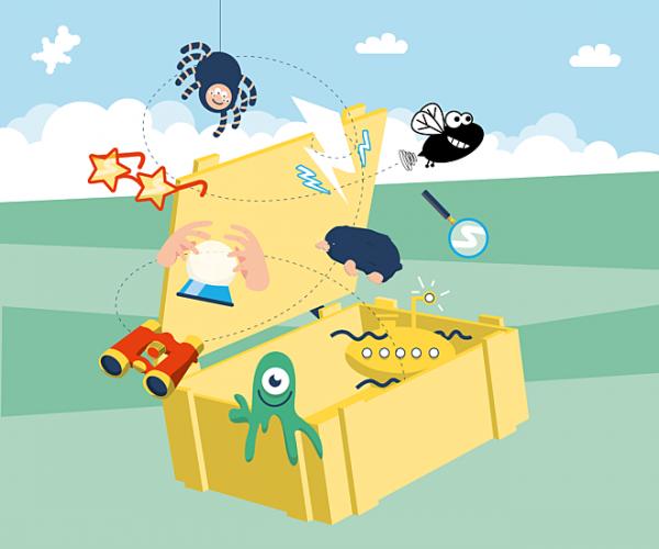 Campagnebeeld schatten van Vlieg, kist met objecten